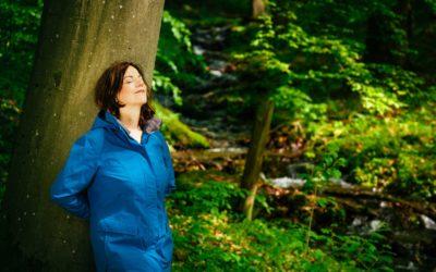 Waldbaden Hessen: 7 Tipps, um zu entschleunigen